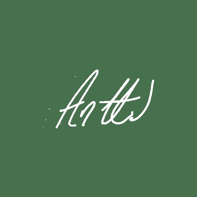 nim_Antti3