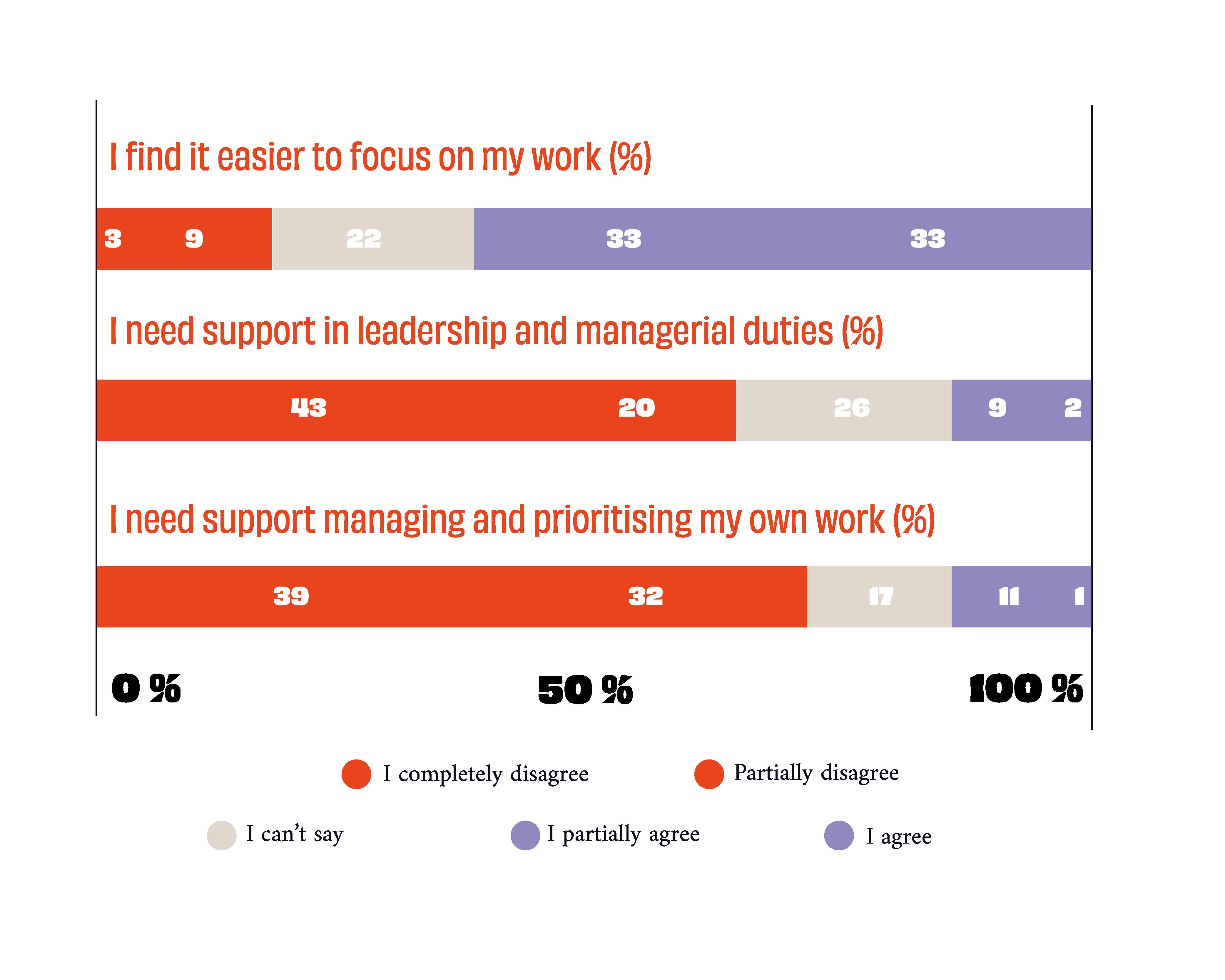 Ellun Kanat Remote Work Survey